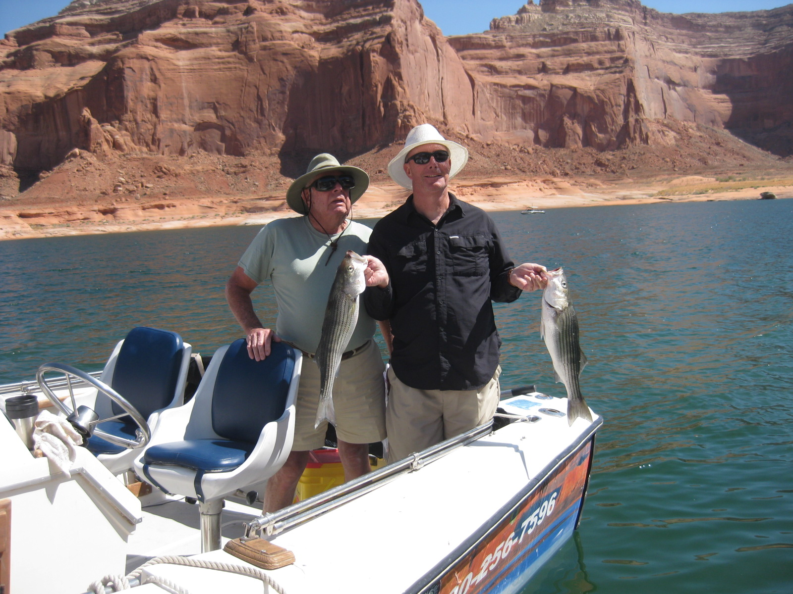 Bait fishing picture tag ambassador guides at lake powell for Lake powell florida fishing
