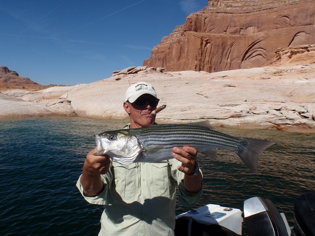 Clausers picture tag ambassador guides at lake powell for Lake powell florida fishing