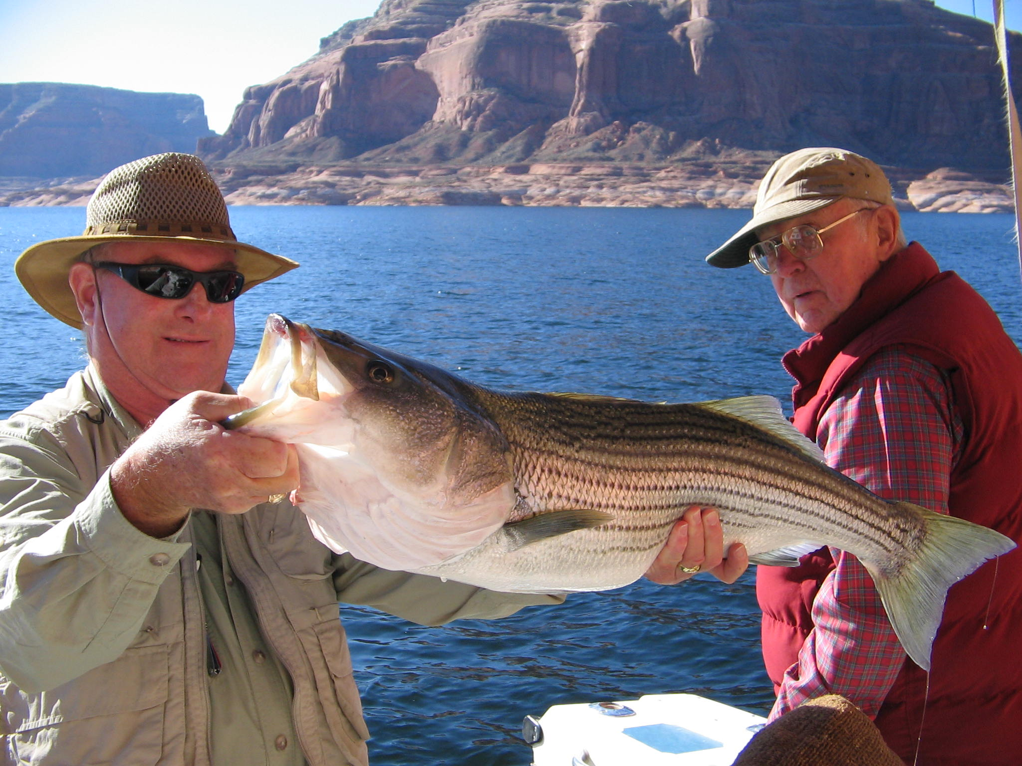 Lake powell 9 13 10 ambassador guides at lake powell for Fishing in tucson