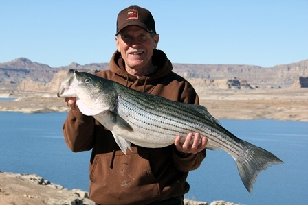 Lake powell fishing report from wayne gustavson 2 1 13 for Lake powell florida fishing
