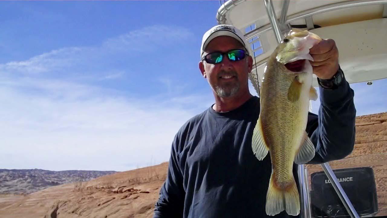 Lake powell fishing 3 27 13 by wayne gustavson for Lake powell fishing