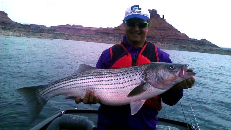 Lake powell fishing guide report 3 18 13 by wayne for Lake powell fishing