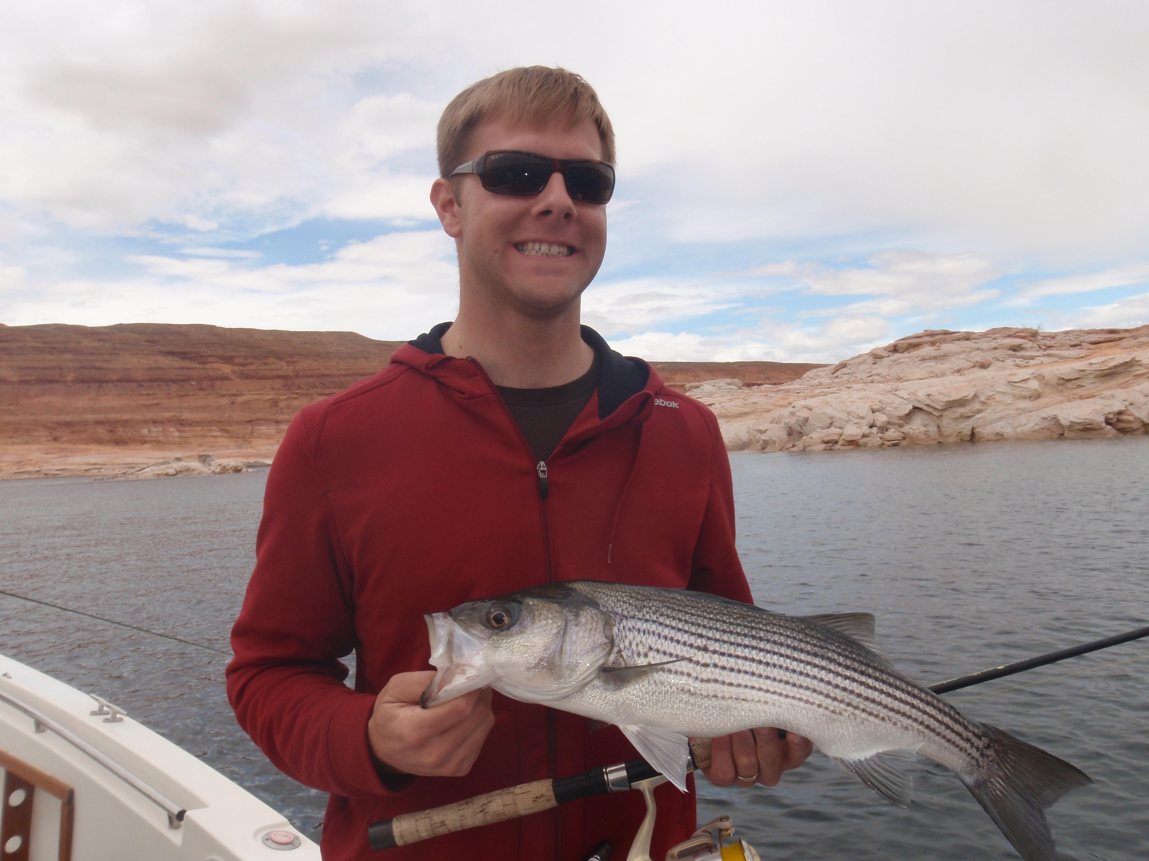 Lake powell fishing 4 12 13 ambassador guides at lake powell for Lake powell fishing
