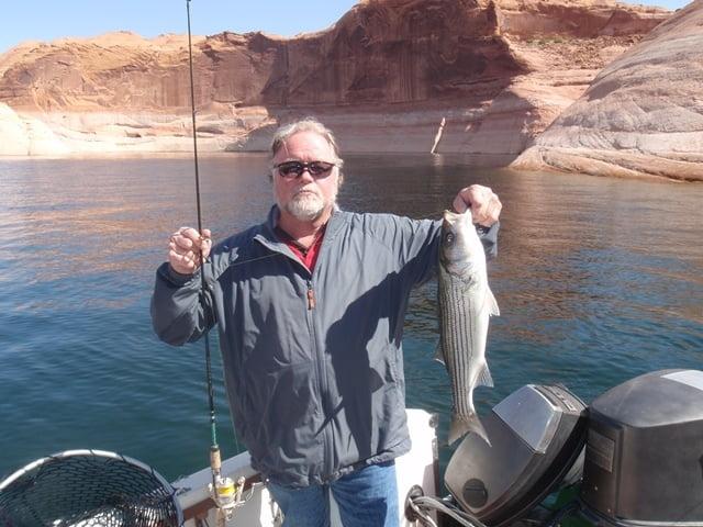 Lake powell fishing 4 25 through 27 2013 ambassador for Lake powell fishing