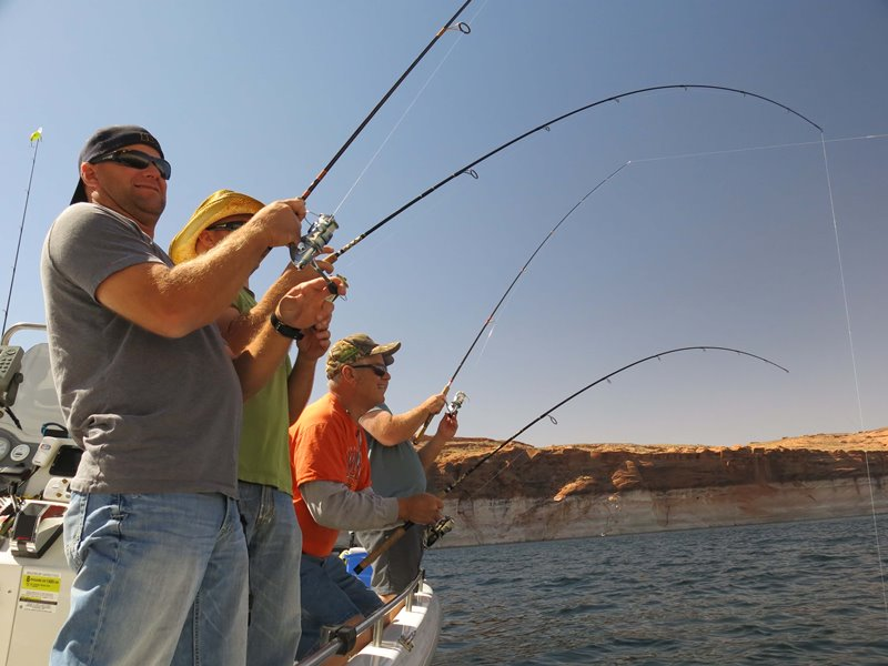 Lake powell fishing report by wayne gustavson 4 17 13 for Lake powell fishing