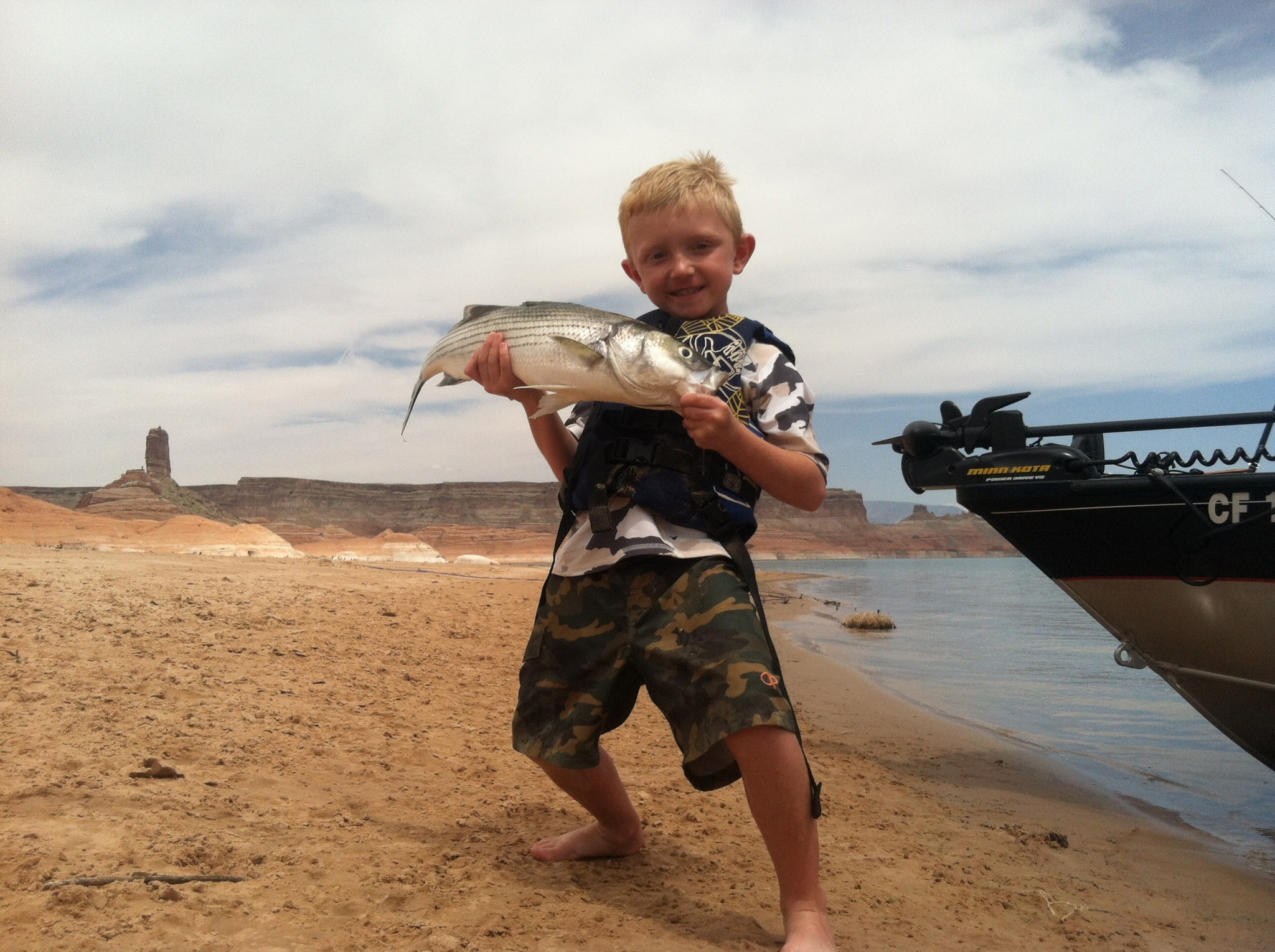 Lake powell fishing report by wayne gustaveson for Lake fishing report