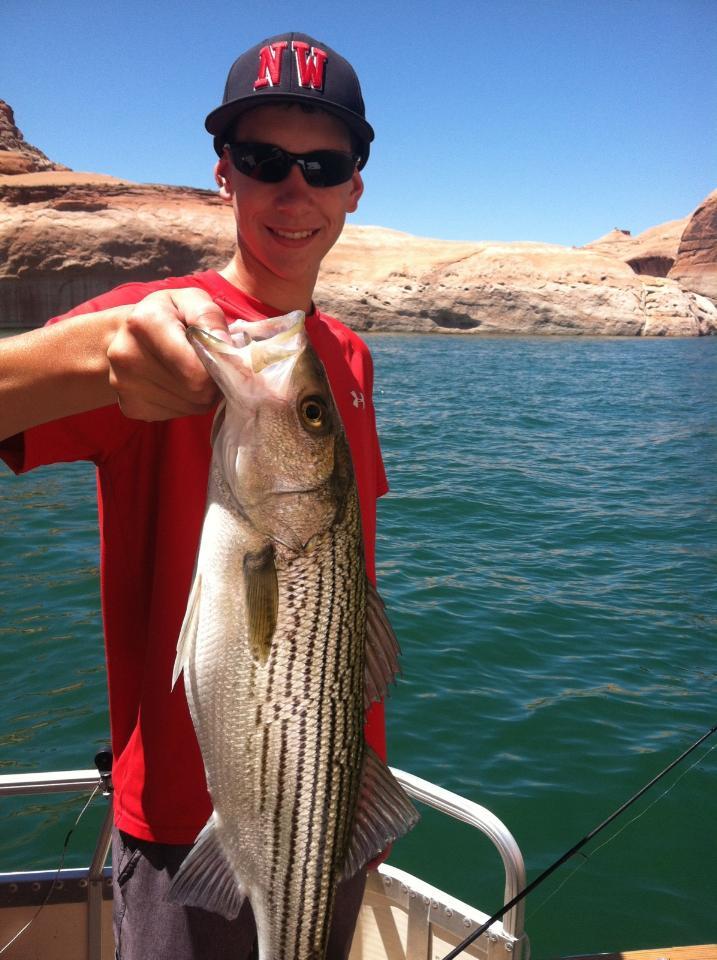 Lake powell fishing report june 10 2015 by wayne for Lake powell fishing