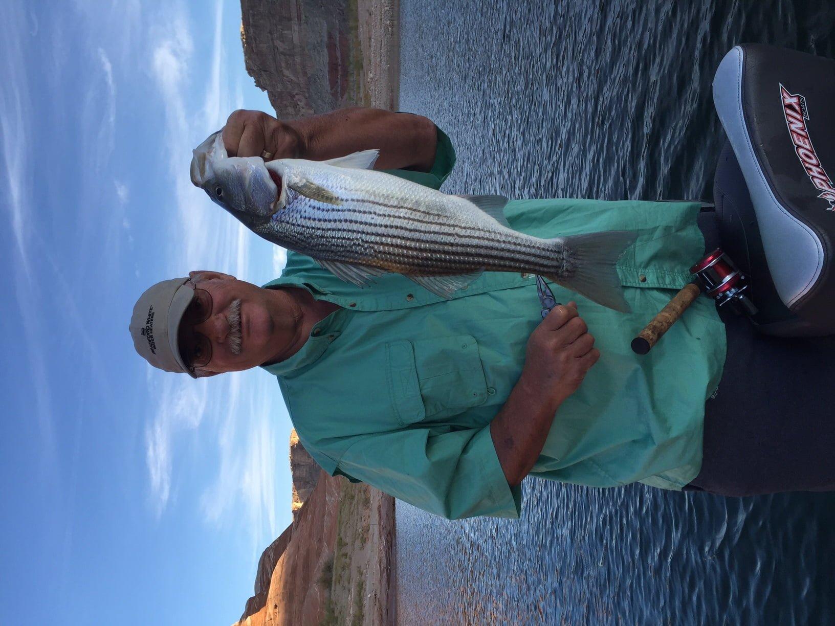 Lake powell fishing report by wayne gustaveson 9 30 15 for Lake powell fishing