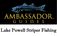 Guided Fishing Tours at Lake Powell
